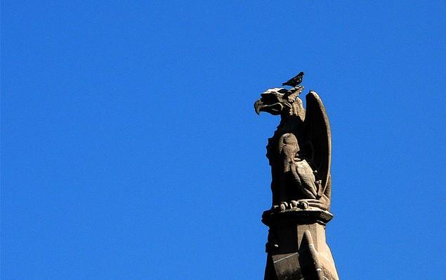 Gargoyle Notre Dame Cathedral