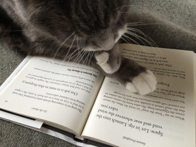 Cat Talk with Steven Pressfield