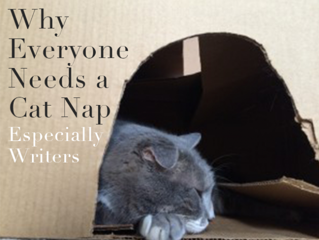 Why Everyone Needs a Cat Nap—Especially Writers