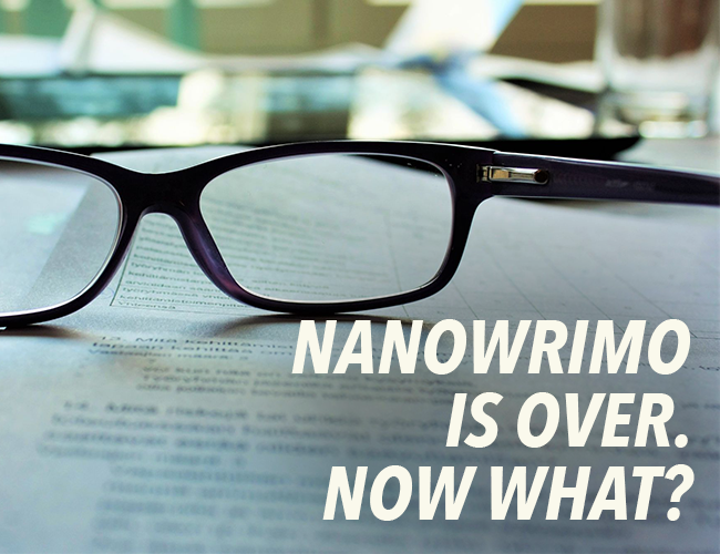NaNoWriMo Is Over. Now What?