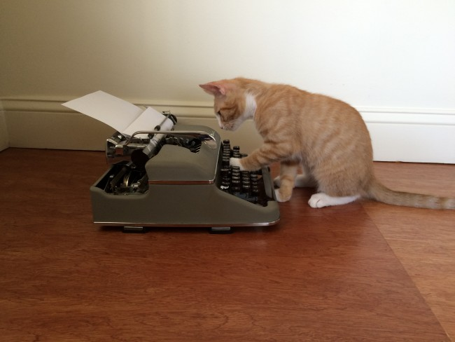 """Résultat de recherche d'images pour """"cat writing"""""""