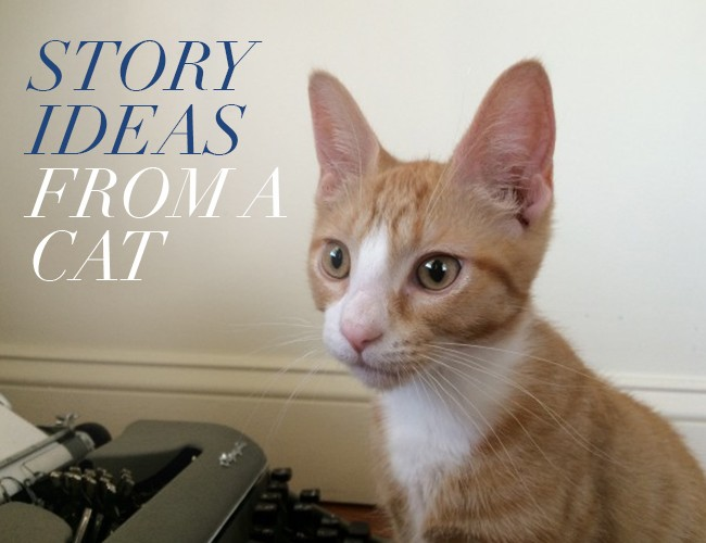 how to write down ideas for a story