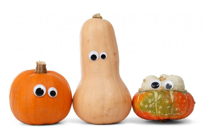 googly-eyed squashes