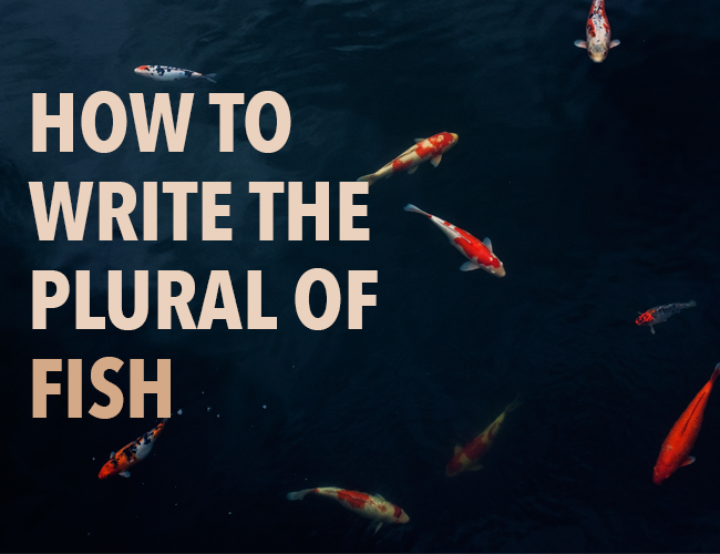 How to Write the Plural of Fish