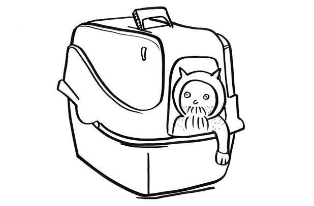 man-in-cat-carrier