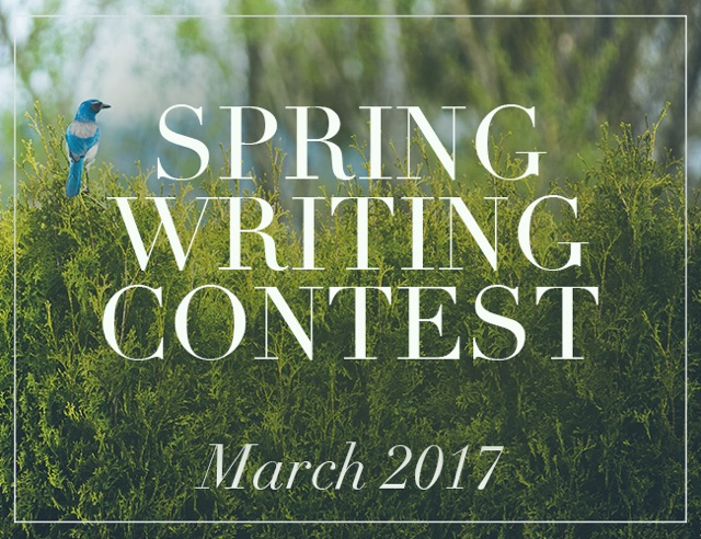 Spring Writing Contests