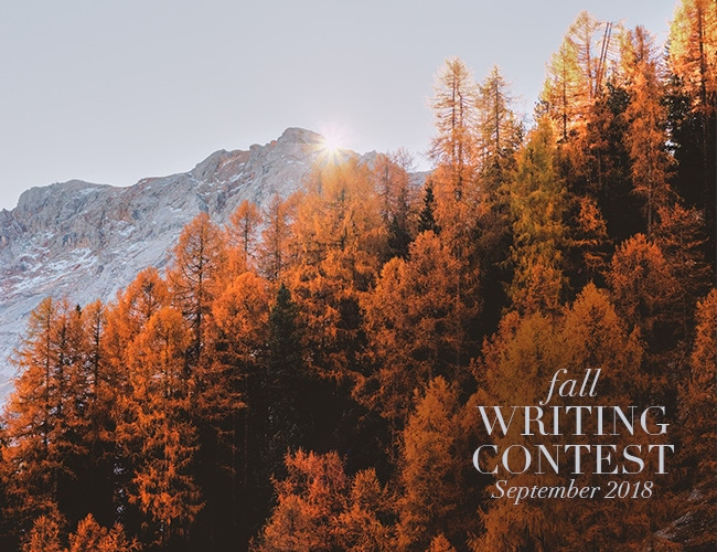 Vote for the Winner of the Fall Writing Contest